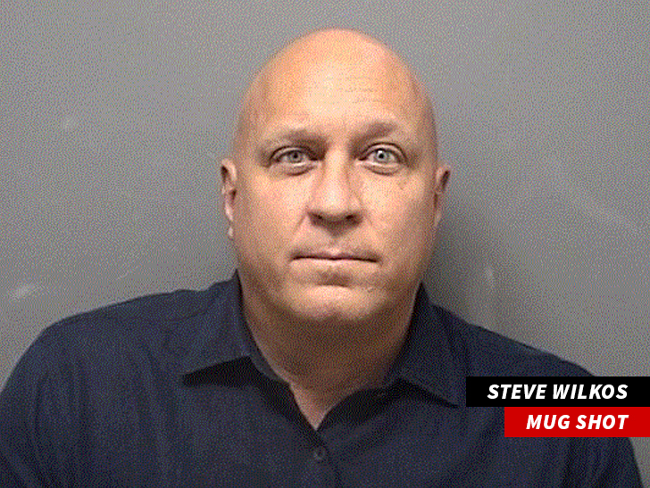 STEVE WILKOS CHARGED WITH DUI IN CAR CRASH ... Admits He lied to TMZ